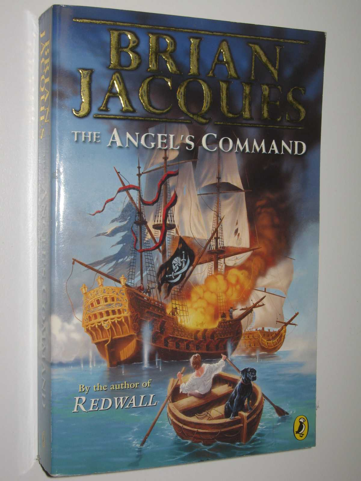 Image for The Angel's Command