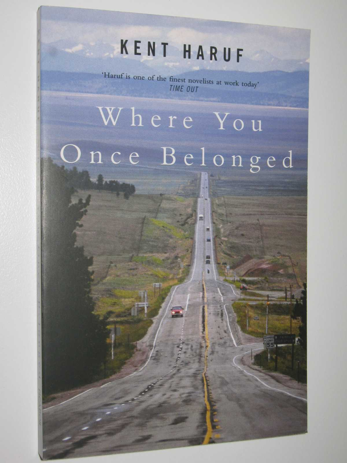 Image for Where You Once Belonged