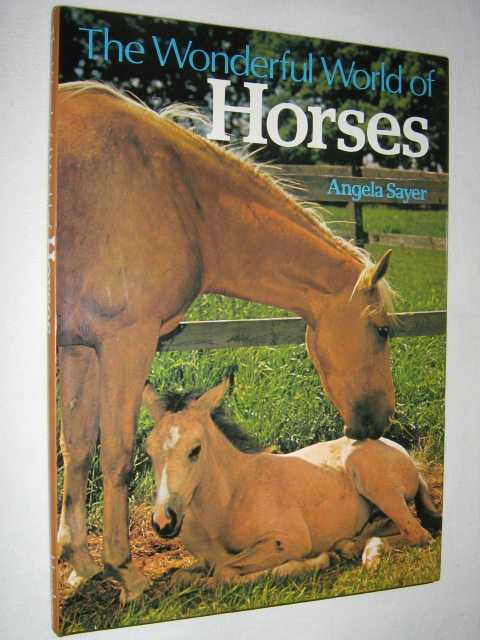 Image for The Wonderful World of Horses