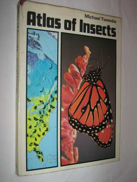 Image for Atlas of Insects