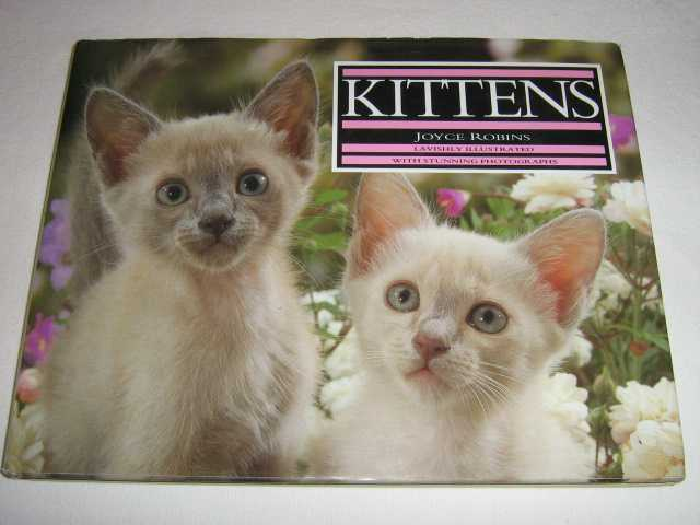 Image for Kittens