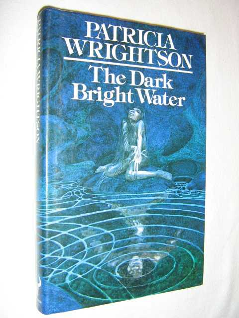 Image for The Dark Bright Water
