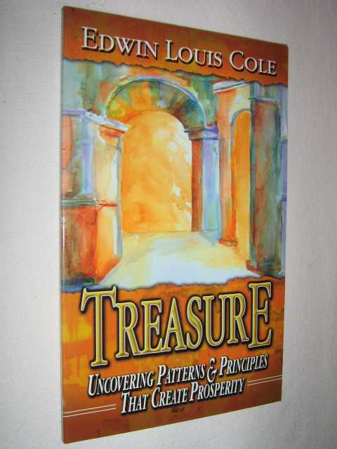 Image for Treasure : Uncovering Patterns & Principles That Create Prosperity