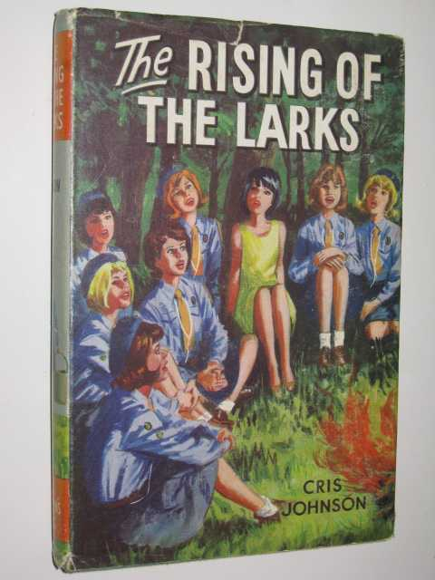 Image for The Rising of the Larks