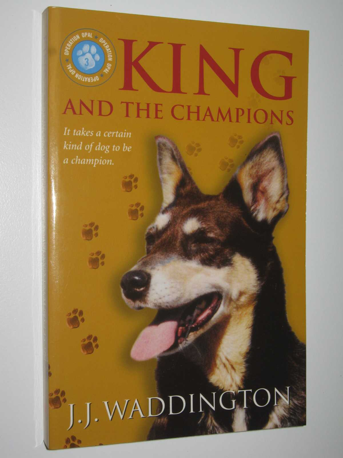 Image for King And The Champions