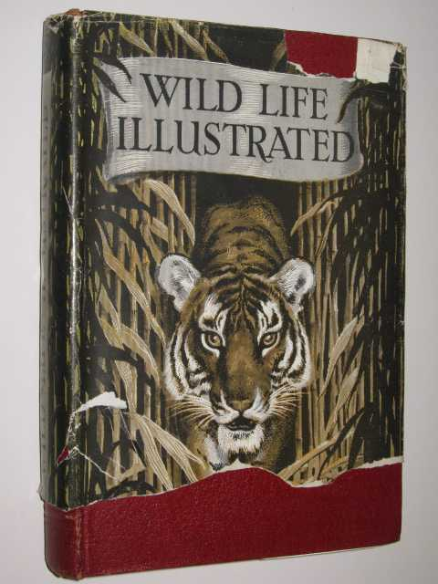 Image for Wild Life Illustrated