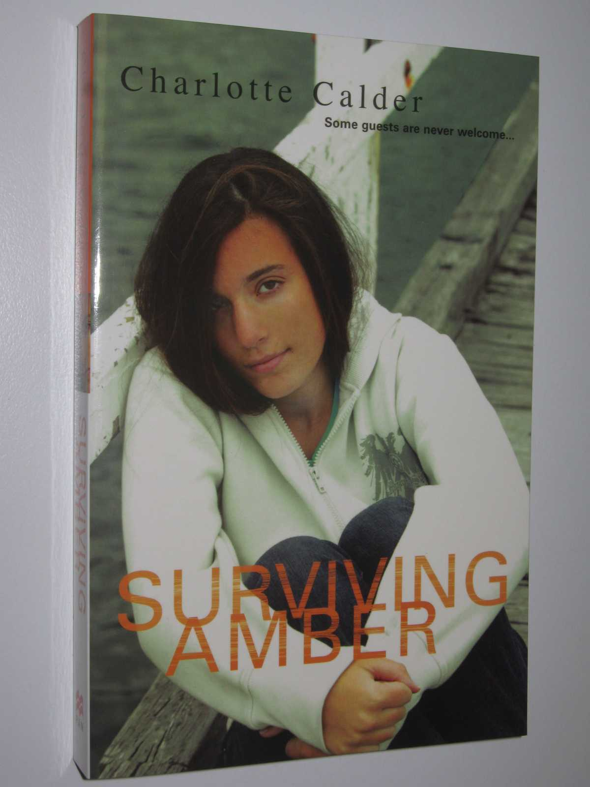 Image for Surviving Amber