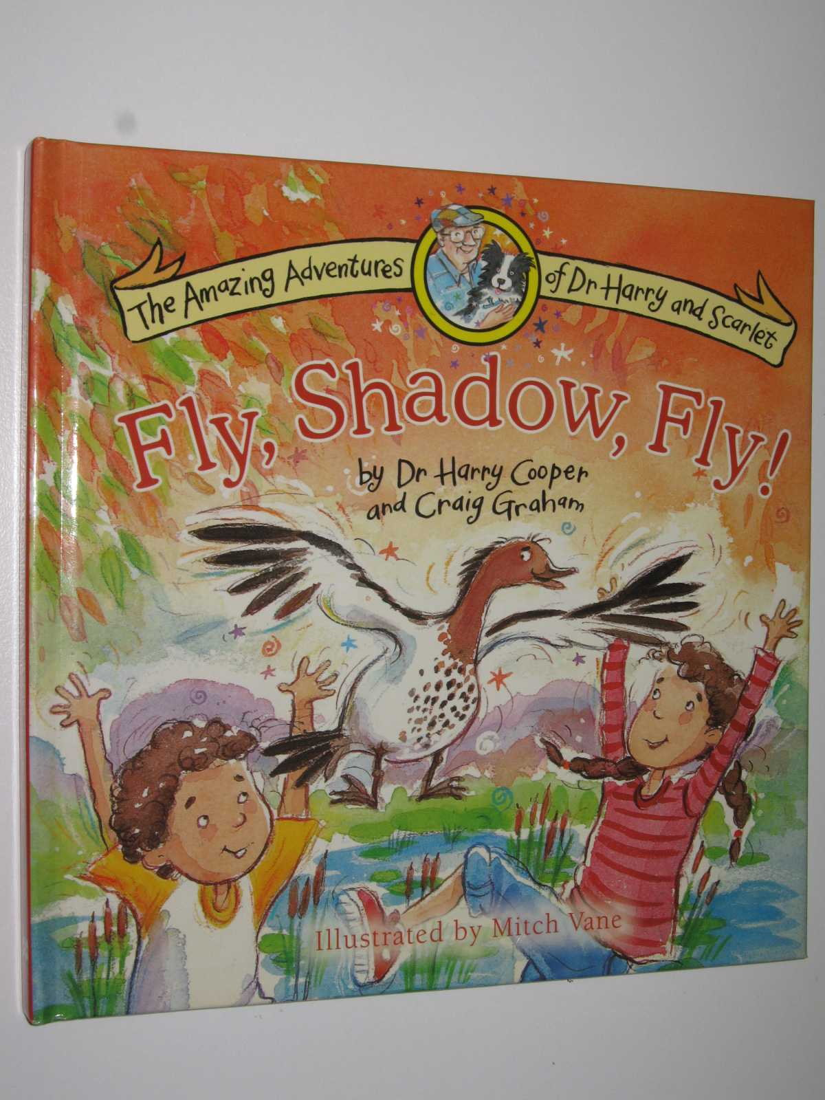 Image for Fly, Shadow, Fly