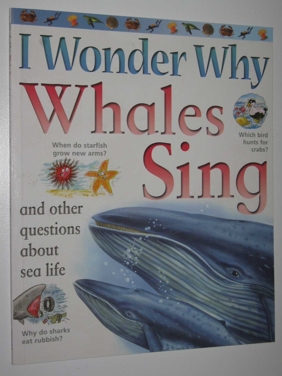Image for I Wonder Why Whales Sing
