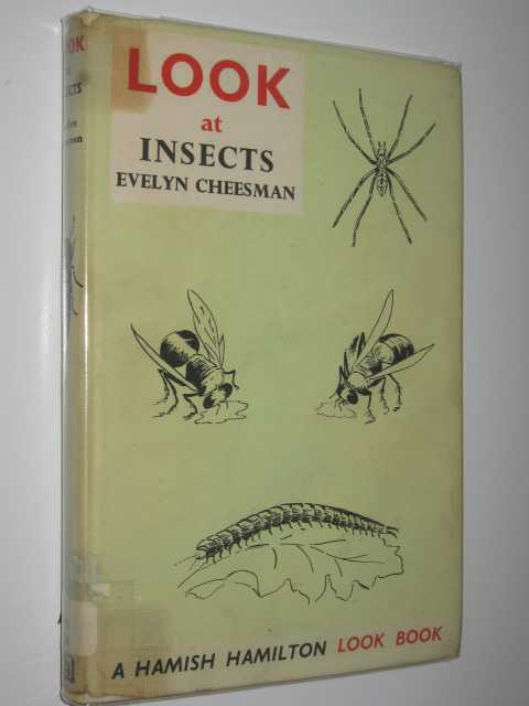 Image for Look at Insects
