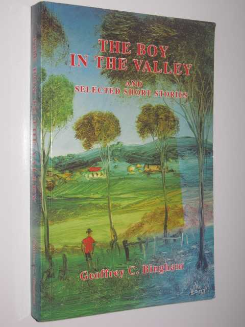 Image for The Boy in the Valley