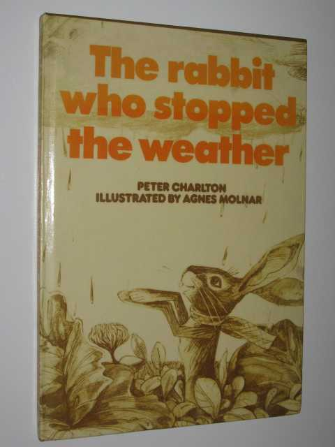 Image for The Rabbit Who Stopped the Weather