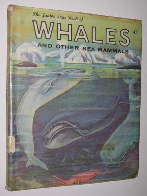 Image for Whales and Other Sea Mammals - Junior True Book Series