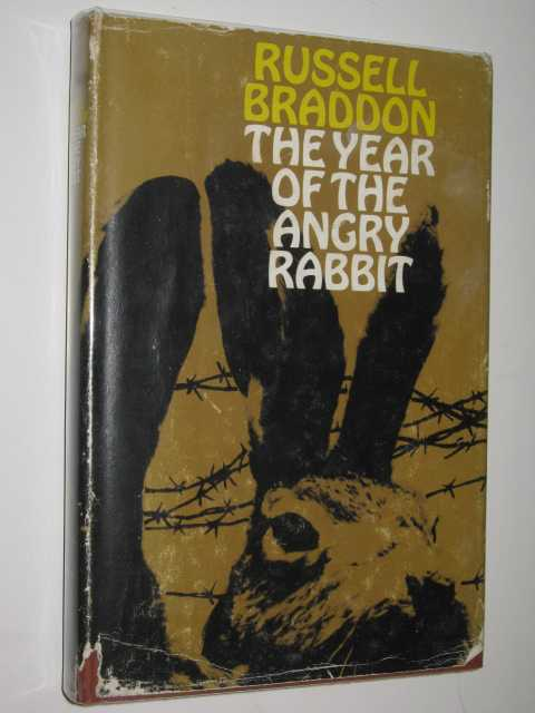 Image for The Year of the Angry Rabbit