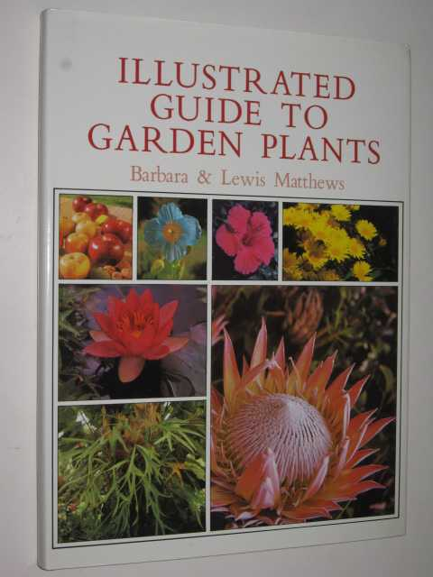 Image for Illustrated Guide To Garden Plants