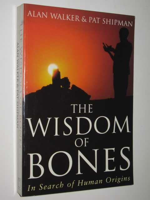 Image for The Wisdom Of Bones : In Search Of Human Origins