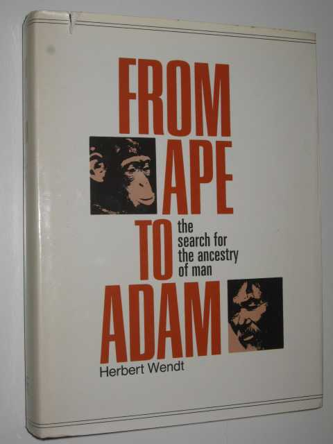 Image for From Ape to Adam : The Search for the Ancestry of Man
