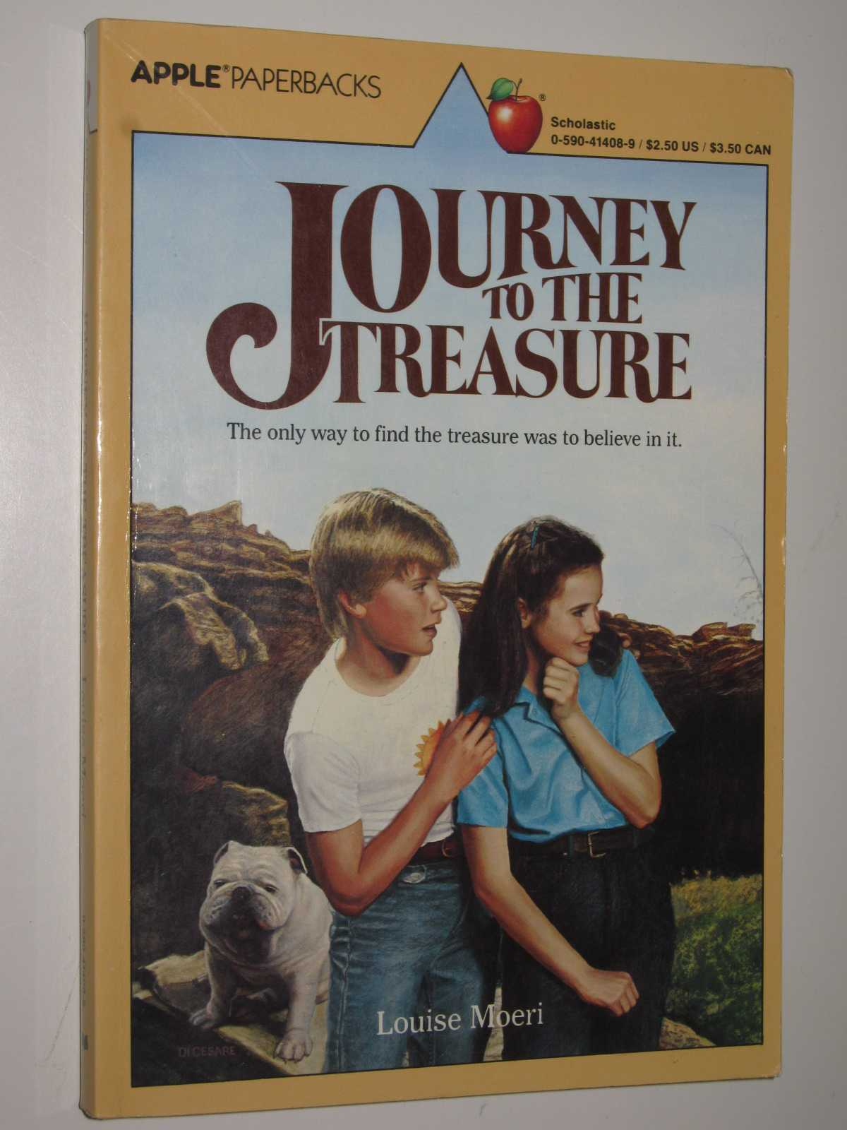 Image for Journey to the Treasure