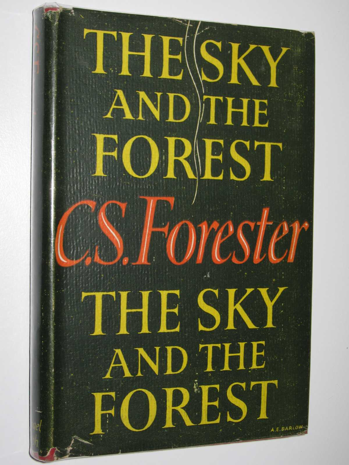 Image for The Sky and the Forest