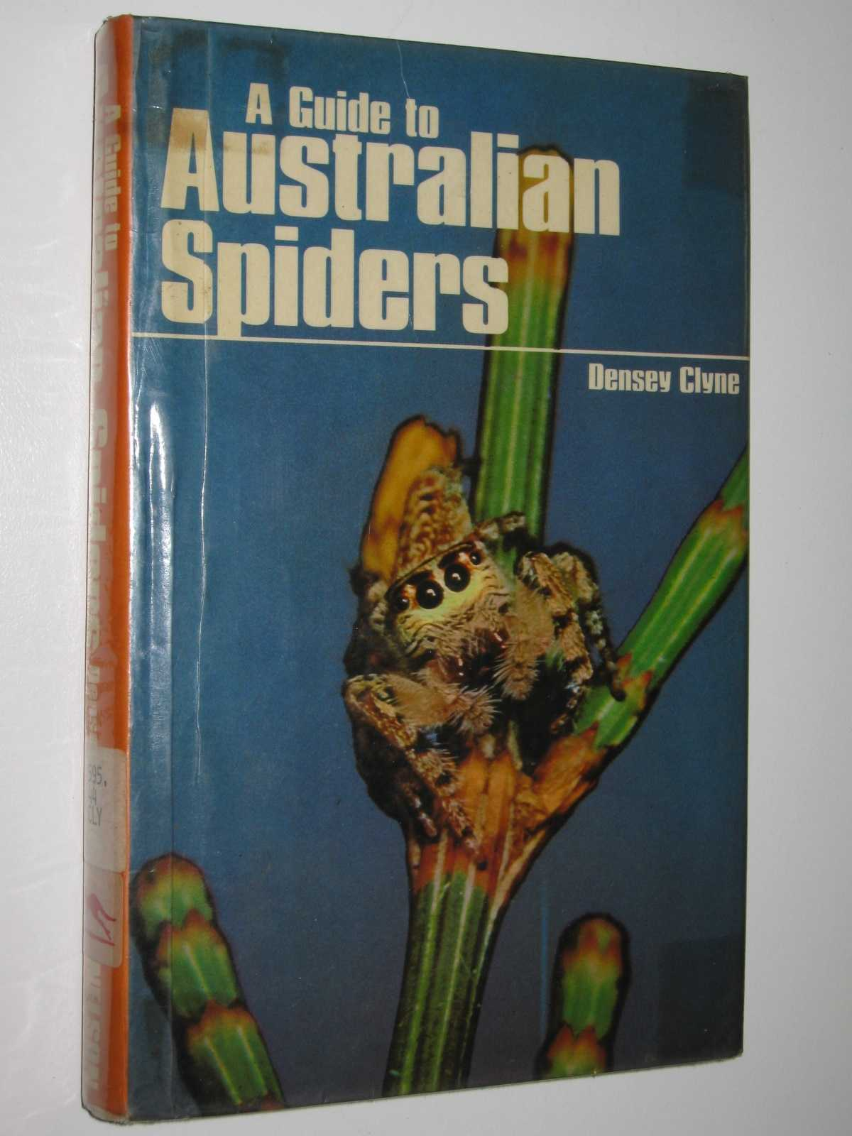 Image for A Guide to Australian Spiders : Their Collection and Identification