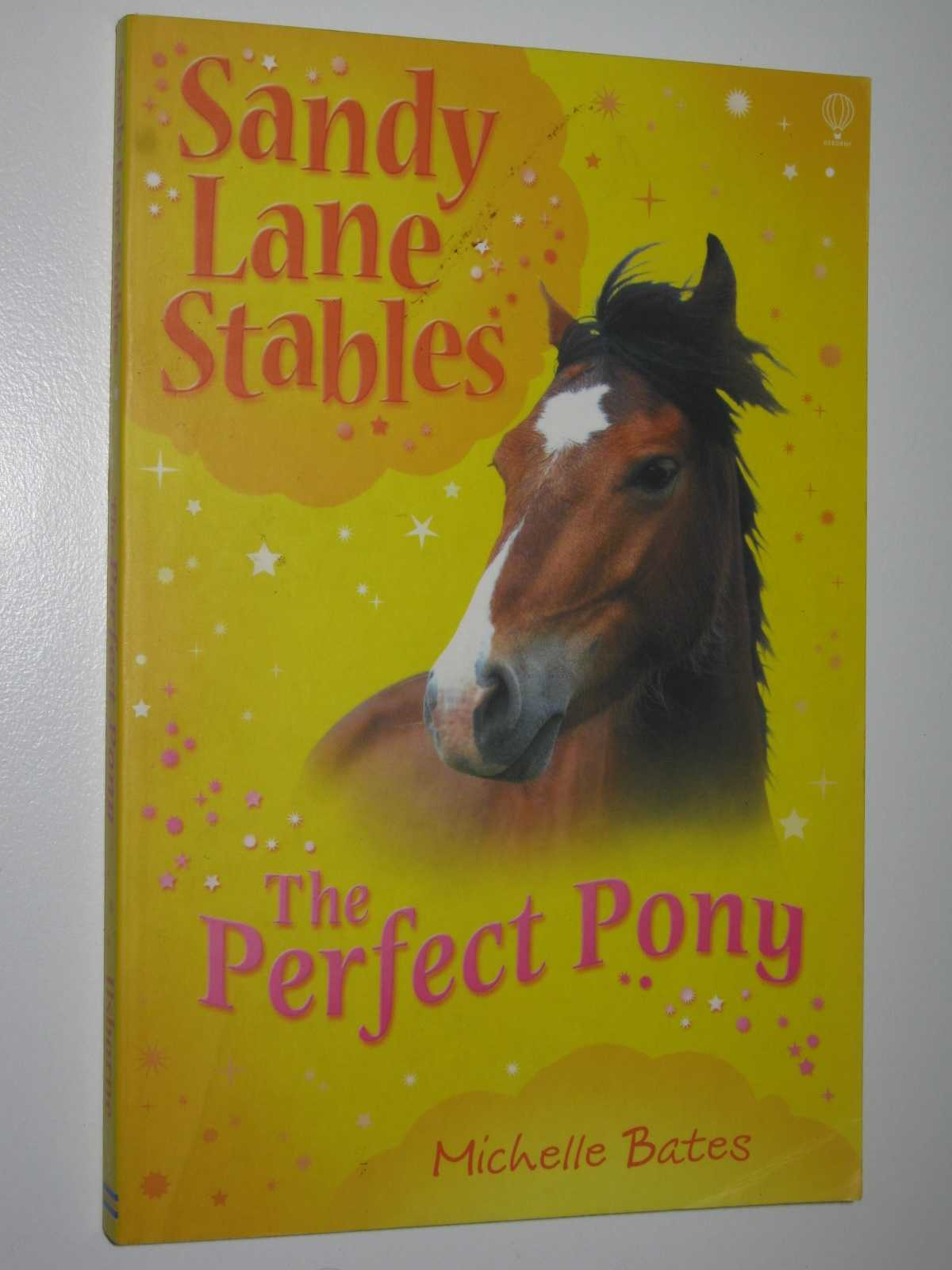 Image for The Perfect Pony - Sandy Lane Stables Series