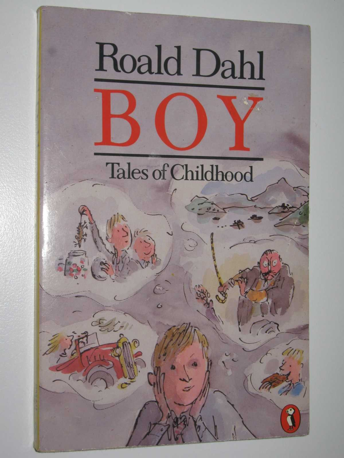Image for Boy: Tales of Childhood