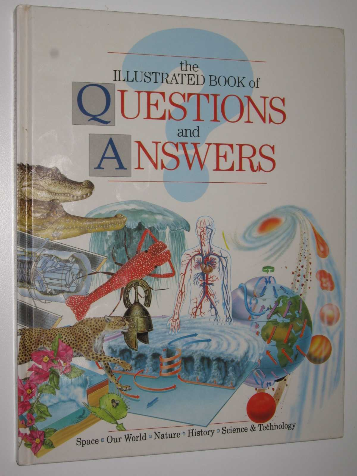 Image for The Illustrated Book of Questions and Answers