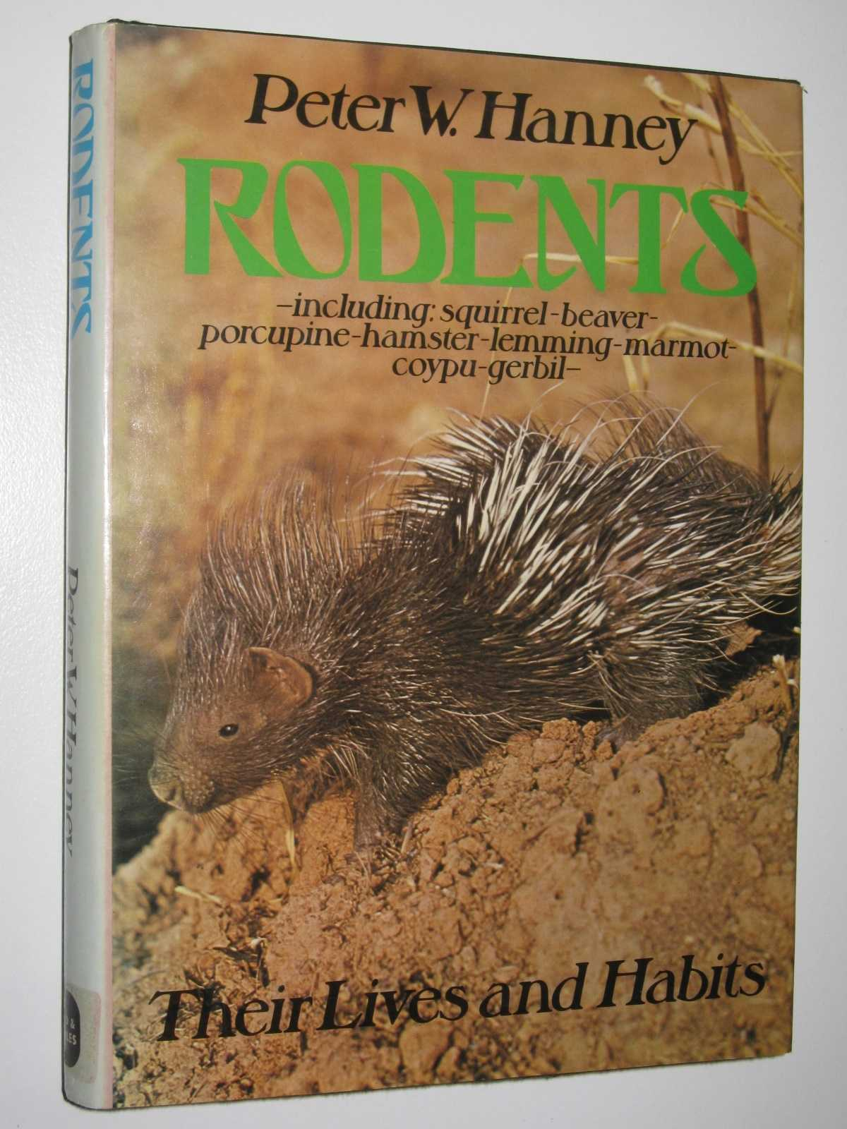 Image for Rodents: Their Lives and Habits