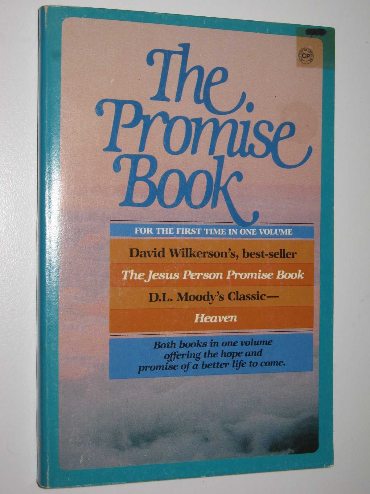 Image for The Promise Book