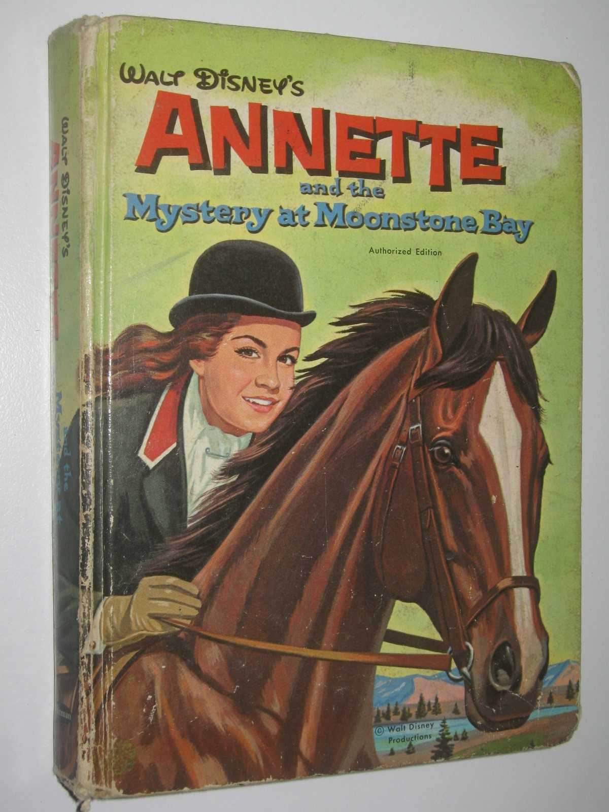 Image for Annette and the Mystery at Moonstone Bay