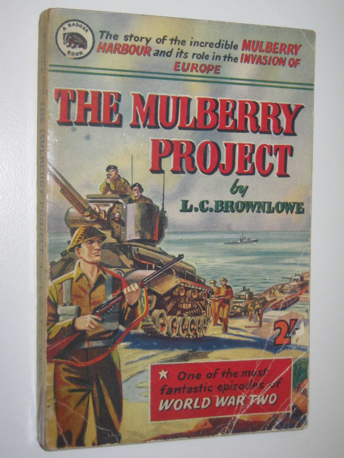 Image for The Mulberry Project