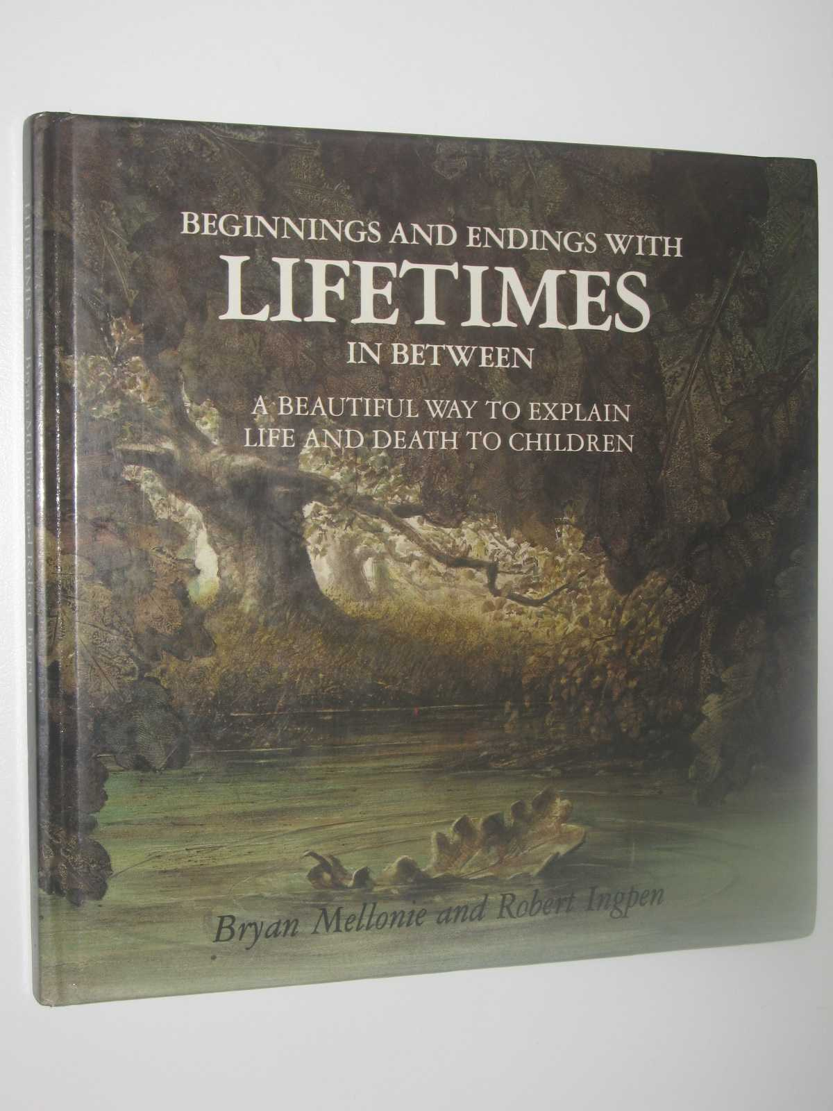 Image for Beginnings and Endings with Lifetimes in Between