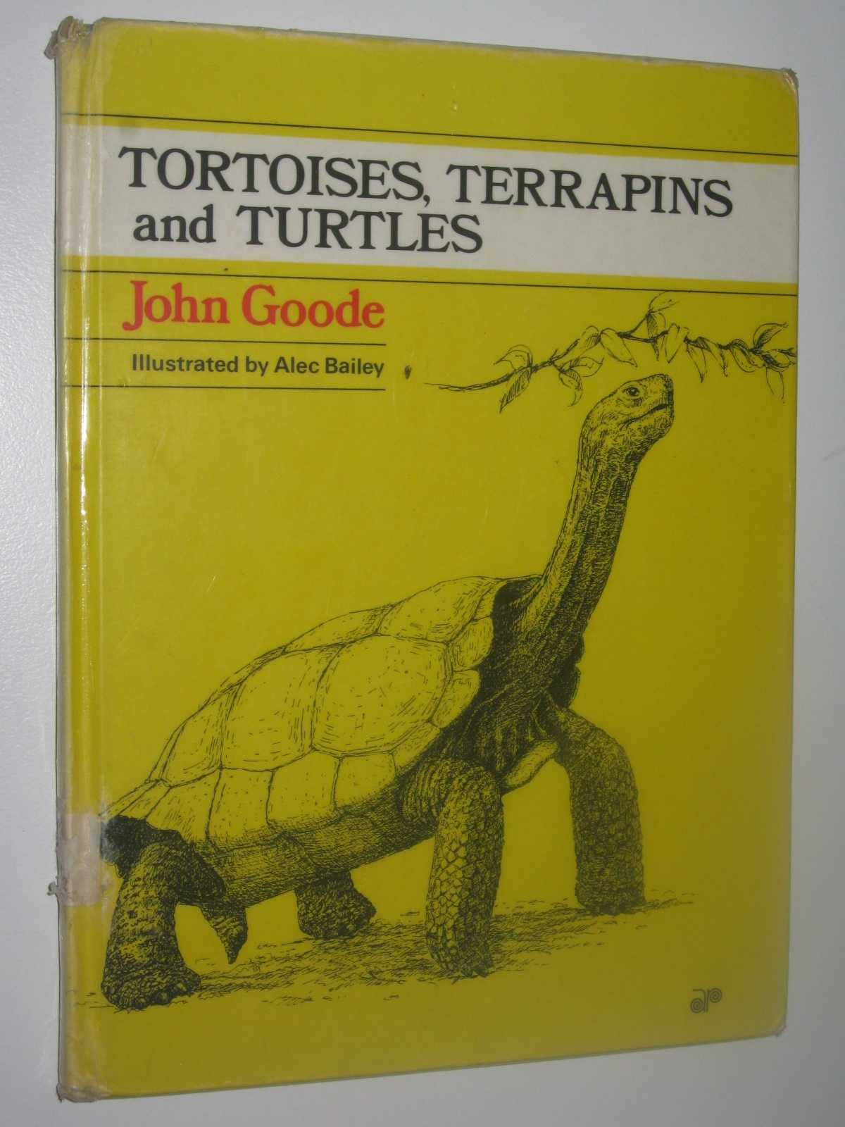Image for Tortoises, Terrapins and Turtles