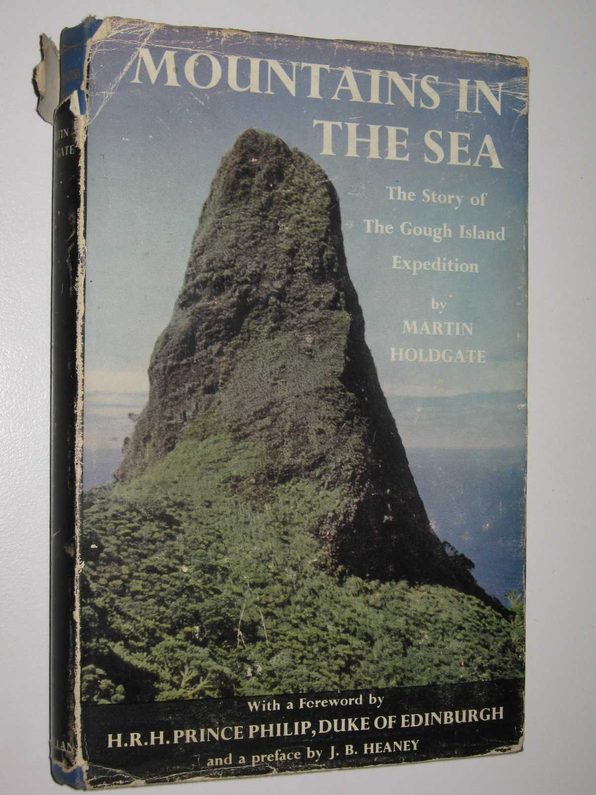 Image for Mountains in the Sea : The Story of The Gough Island Expedition