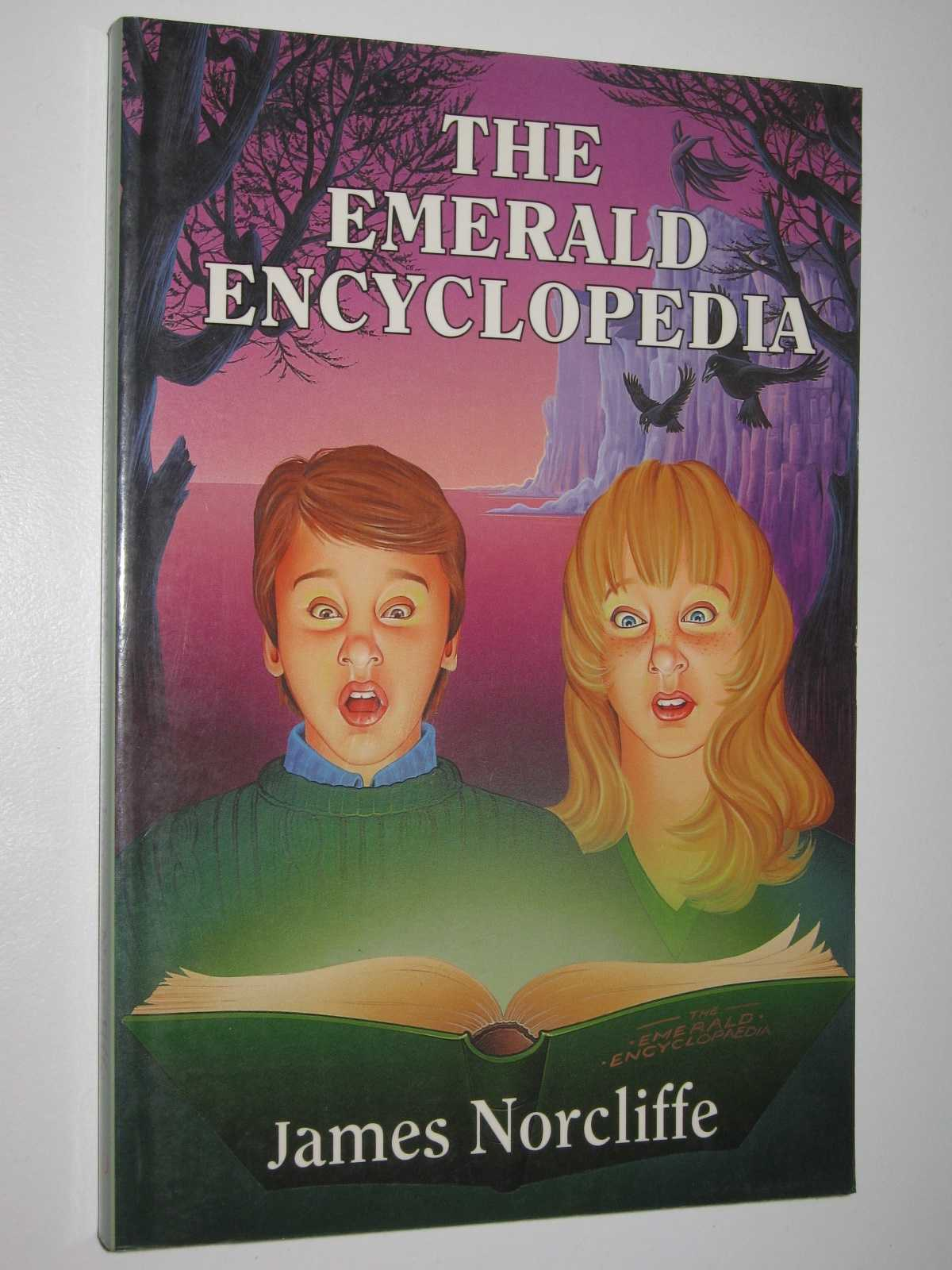 Image for The Emerald Encyclopedia