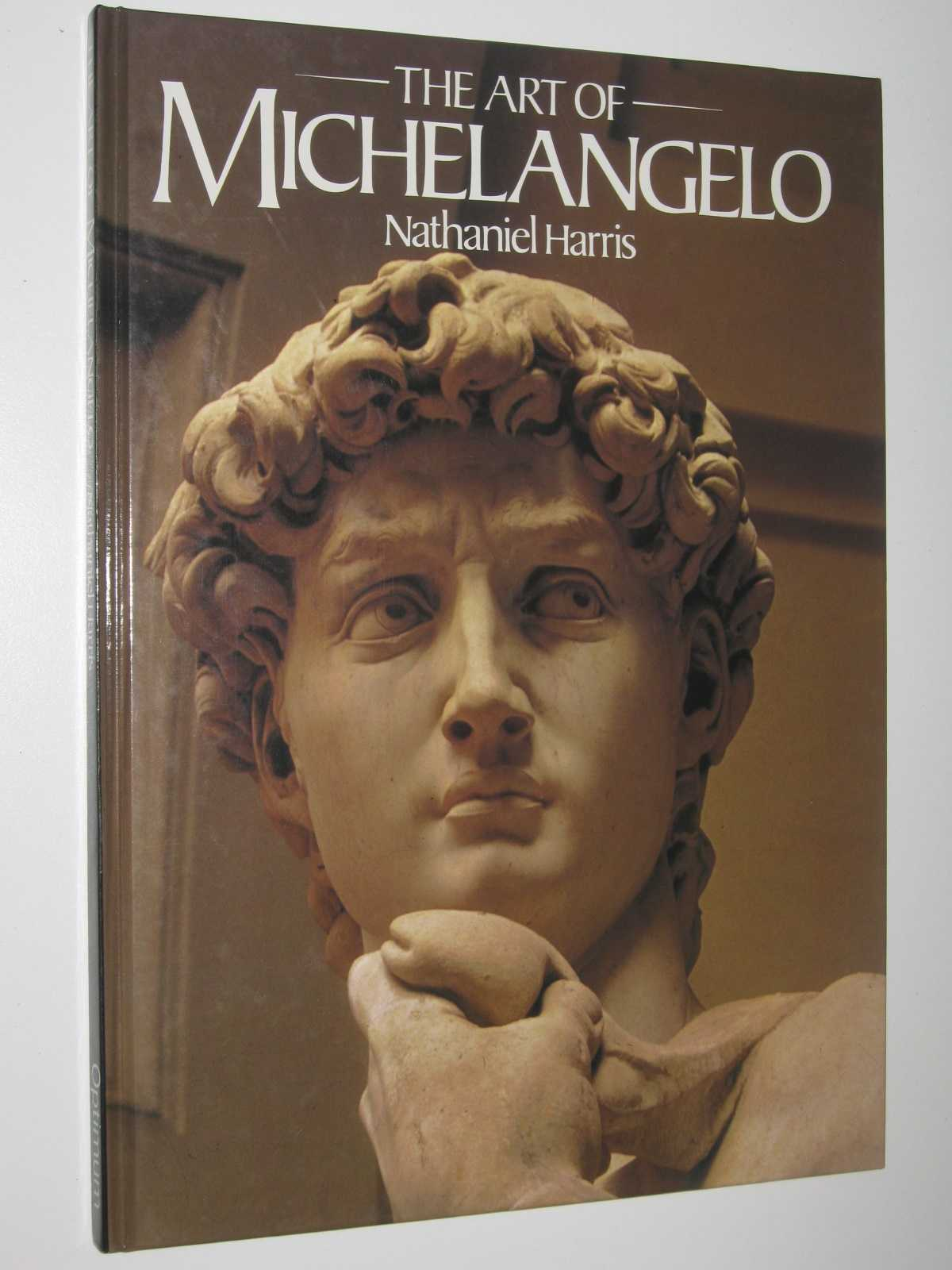 Image for The Art of Michelangelo