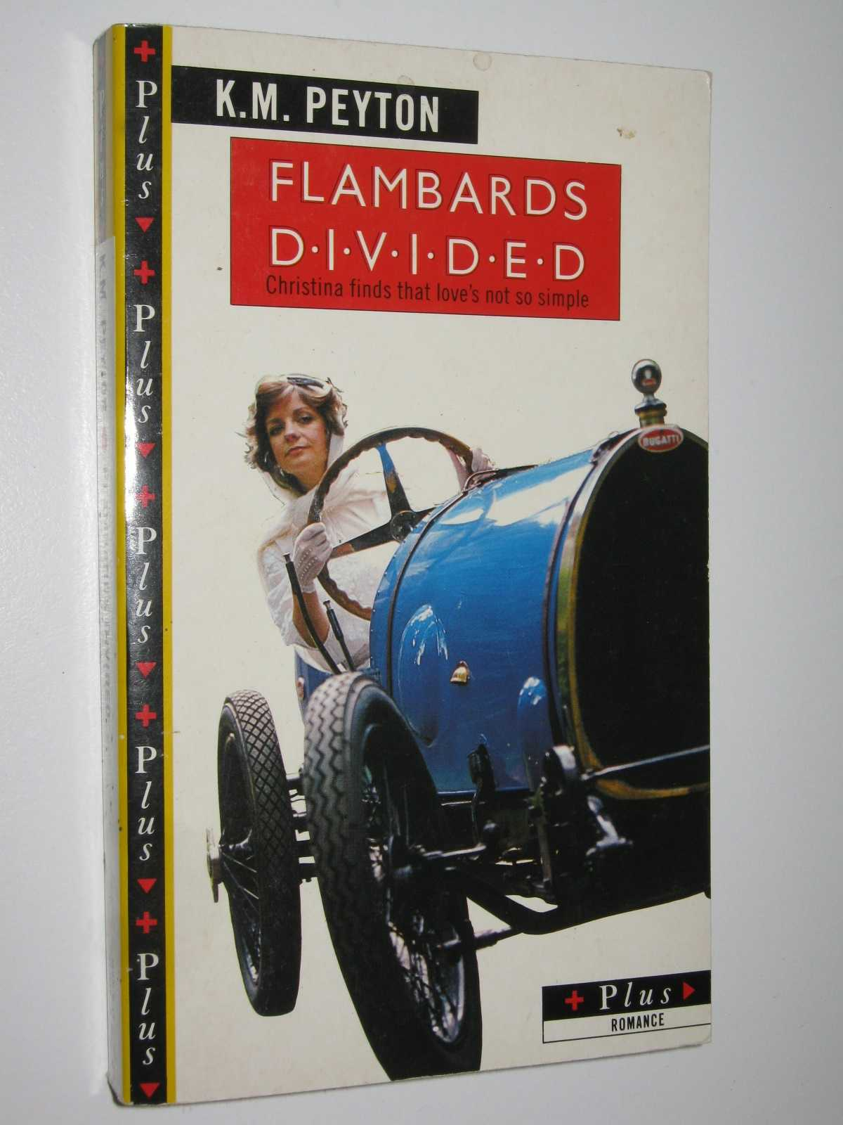Image for Flambards Divided