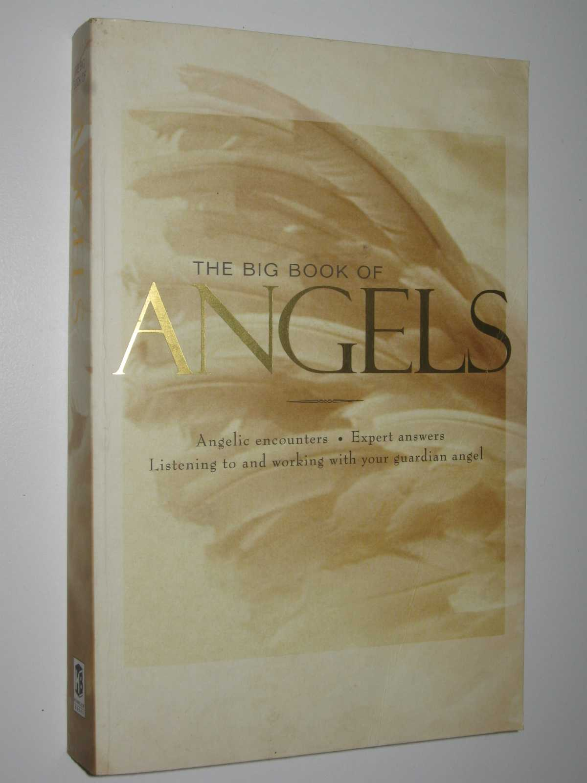 Image for The Big Book of Angels