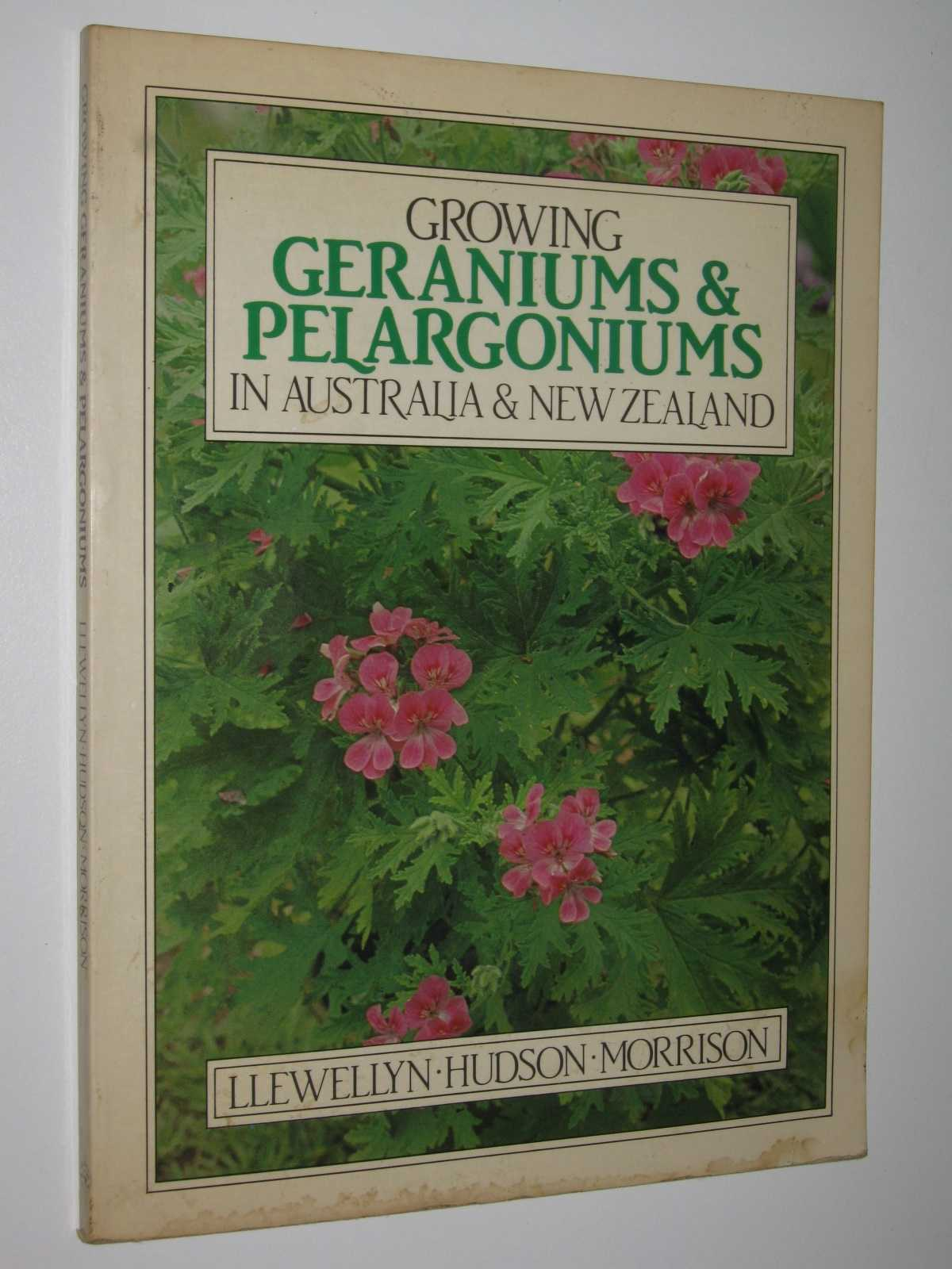 Image for Growing Geraniums and Pelargoniums