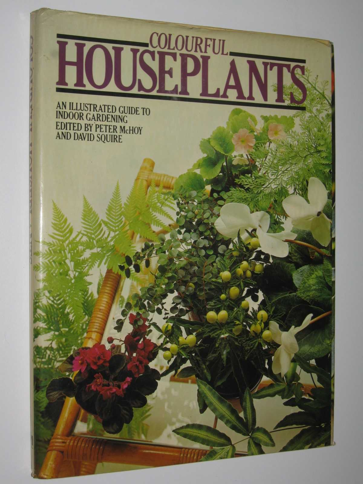 Image for Colourful Houseplants : An Illustrated Guide to Indoor Gardening